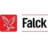 Falck_logo_pos_